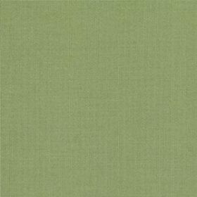 Bella Solids 9900-102 Prairie Green