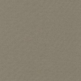 Robert Kaufman Kona Solids K001-859 Zinc