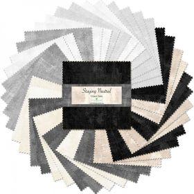 Wilmington Prints Pre-Cuts Essentials Dry Brush 5 Squares 507-48-507
